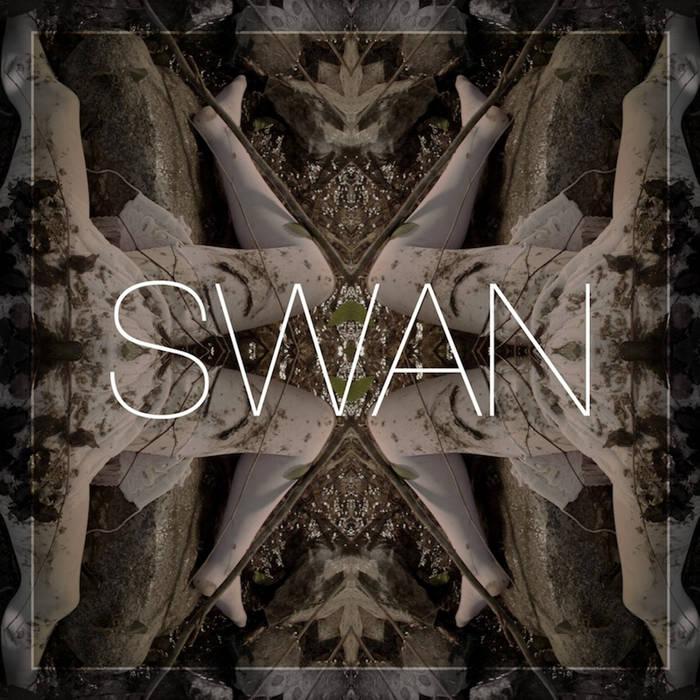 SWAN cover art