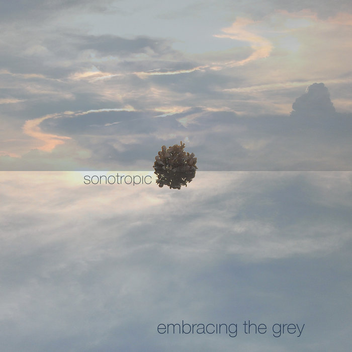 Embracing the Grey cover art