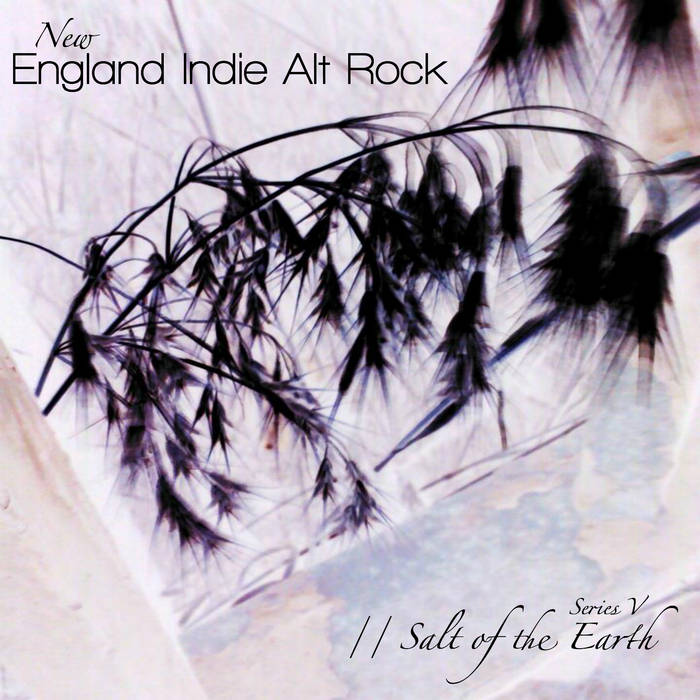 New England Indie Alt Rock - Series V cover art