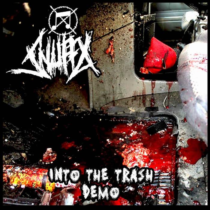 Into the trash (demo 2016) cover art