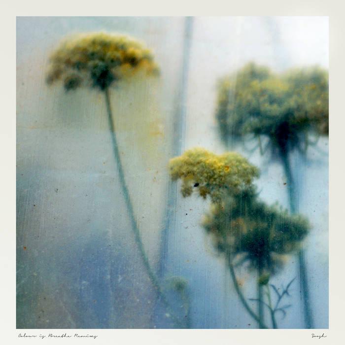 Colour is Breathe Remixes cover art