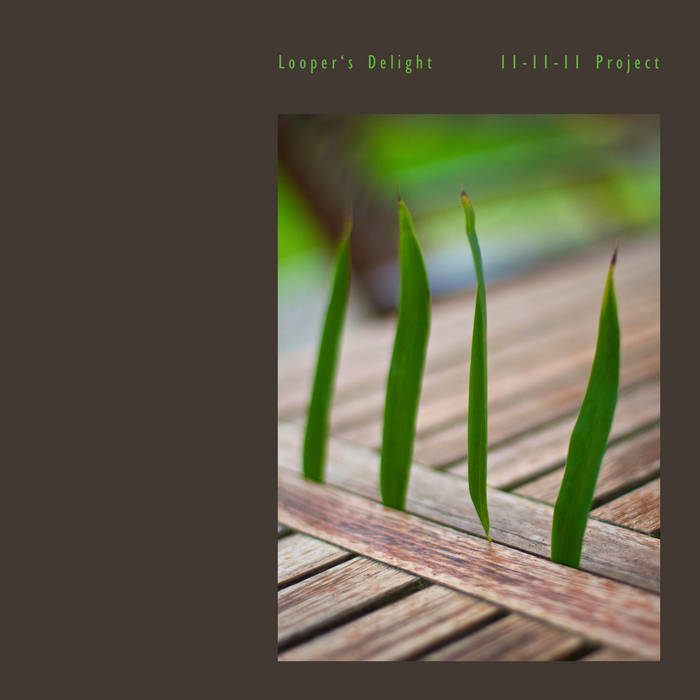 Looper's Delight 11-11-11 Project cover art
