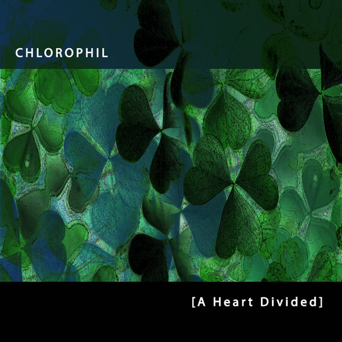 A Heart Divided cover art