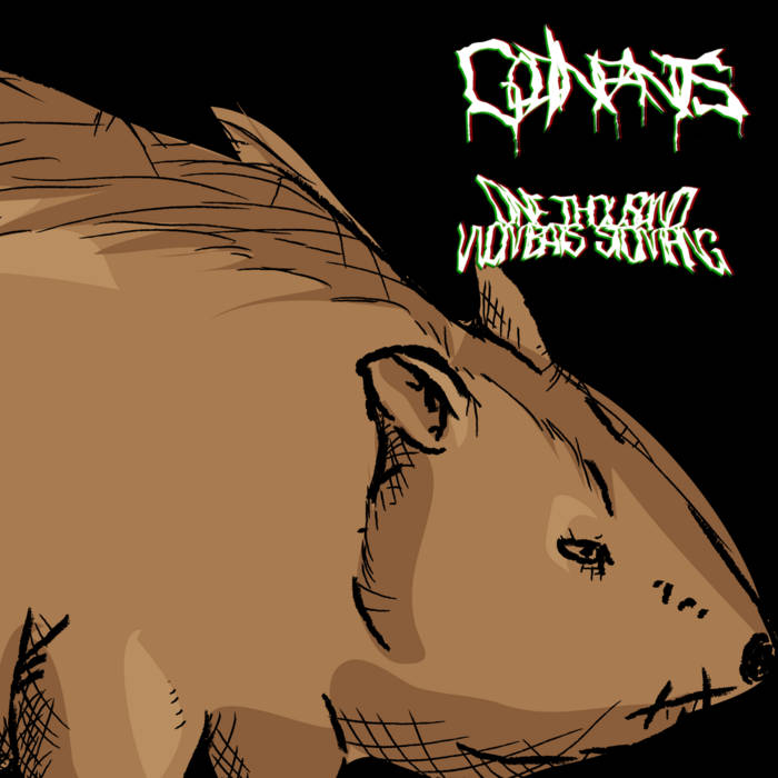 1000 Wombats Stomping cover art