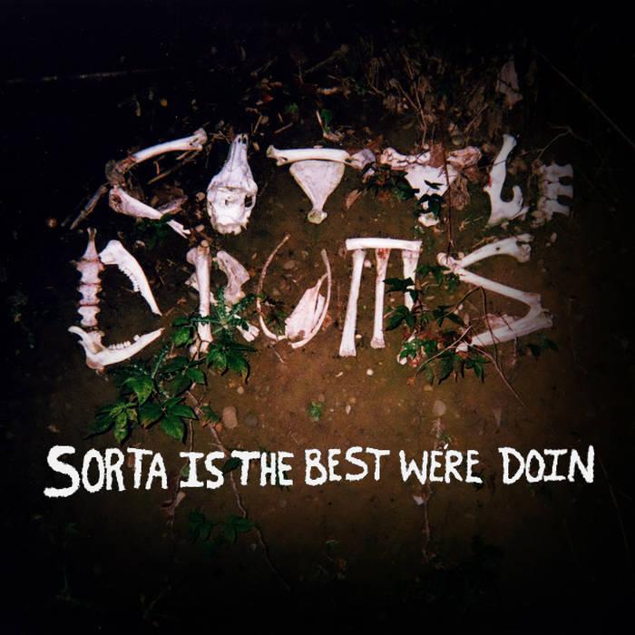 Sorta is the Best We're Doin cover art