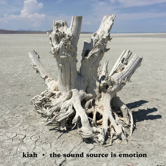 The Sound Source Is Emotion cover art