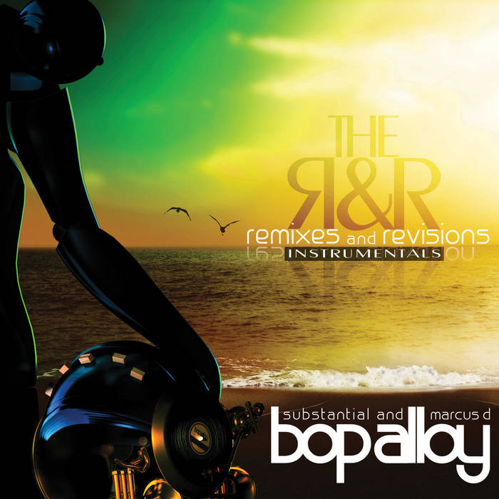 The R & R (Remixes & Revisions) [INSTRUMENTALS] cover art
