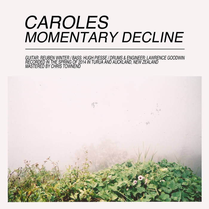 Momentary Decline cover art