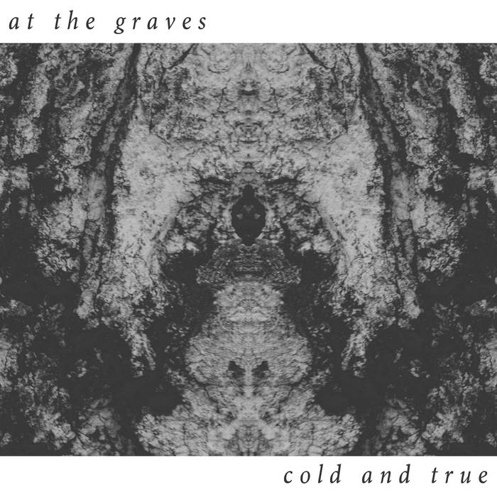 Cold and True cover art