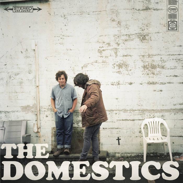 THE DOMESTICS cover art