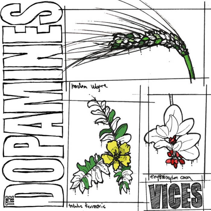 Vices cover art