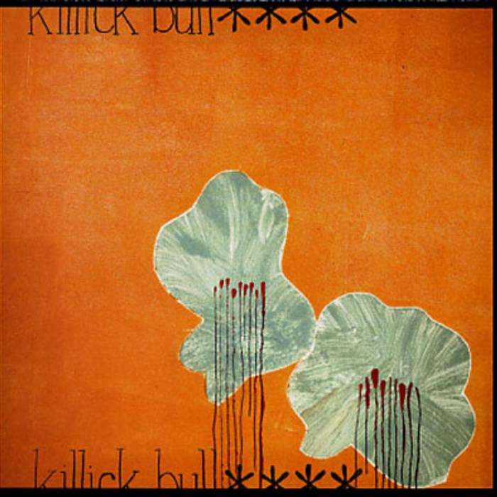 Bull**** cover art