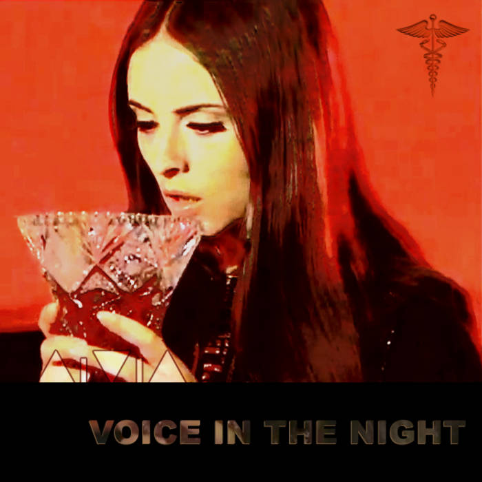 Voice In The Night cover art