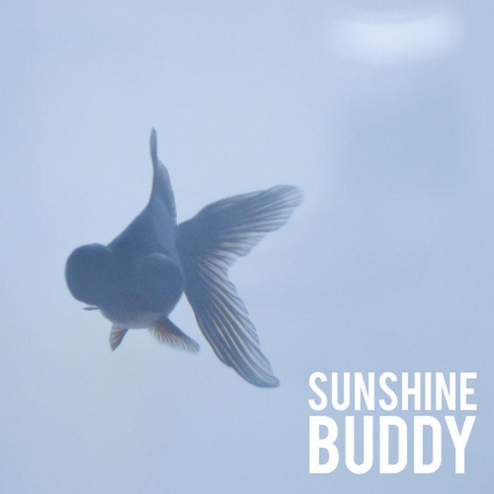 Sunshine Buddy cover art