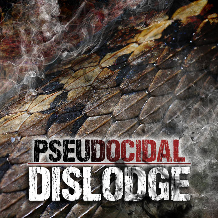 Dislodge cover art