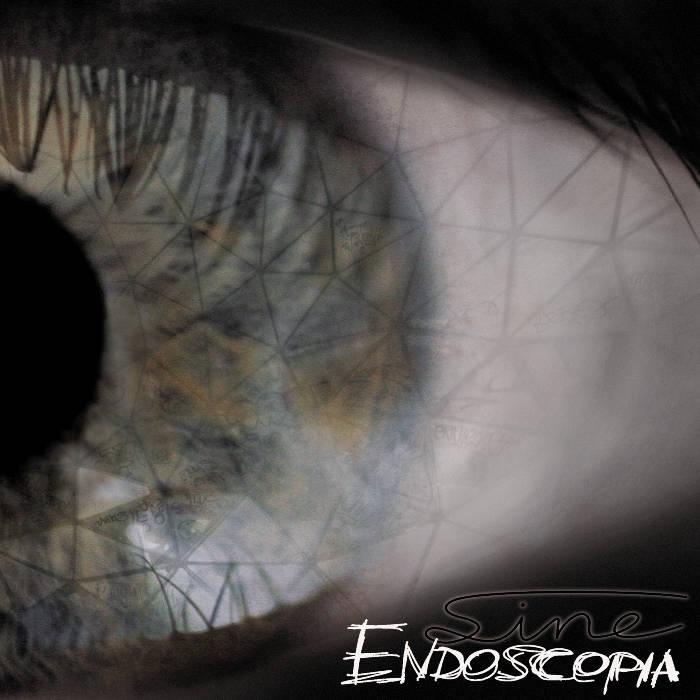 Endoscopia cover art