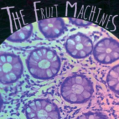 The Fruit Machines main photo