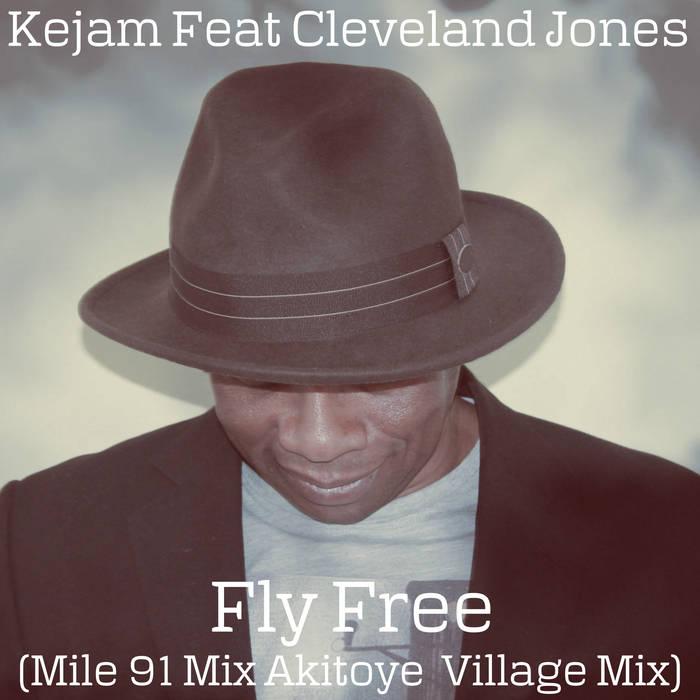 Fly Free (Mile91 Akitoye Mix) cover art