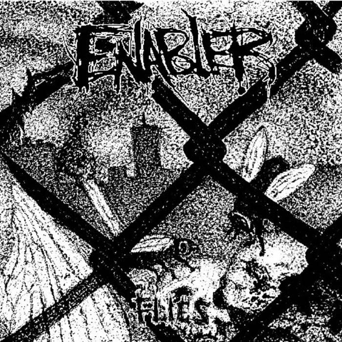 Flies EP cover art