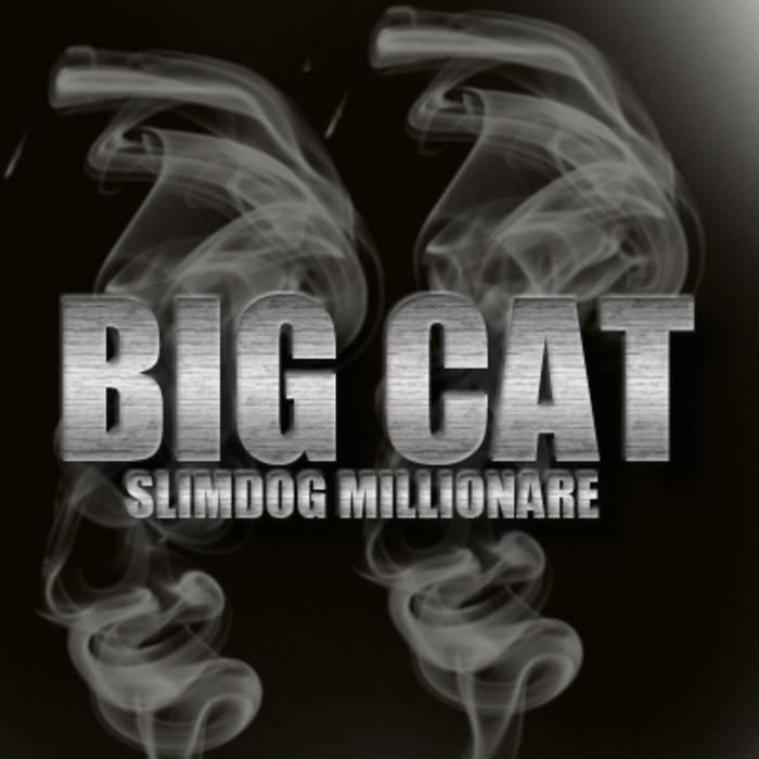 SlimDog Millionare cover art