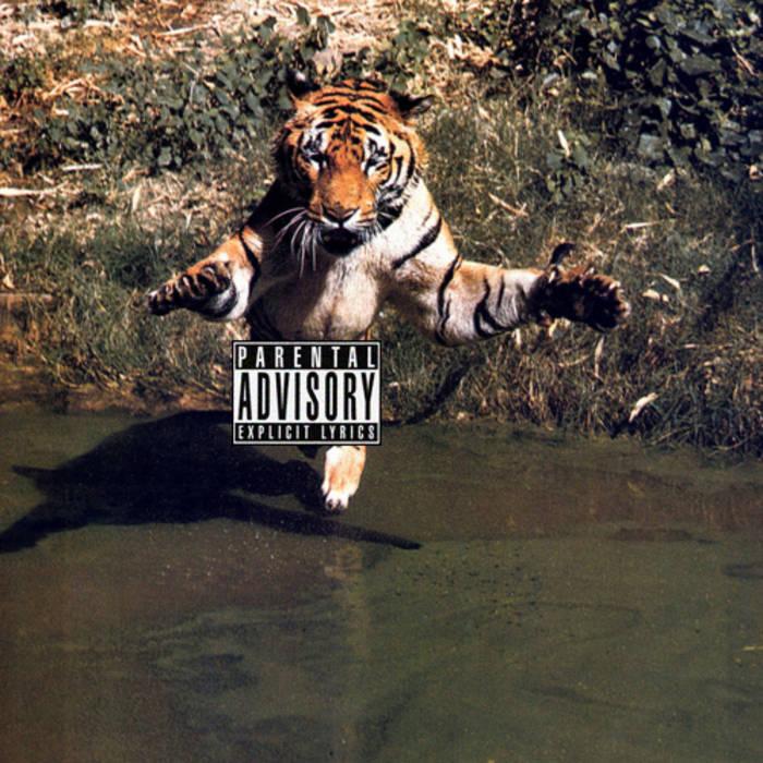 Beats & Stripes I: Damn Tape cover art