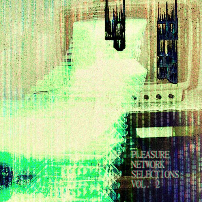 Pleasure Network Selections: Vol. 2 cover art
