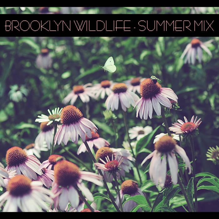 Summer Mix cover art