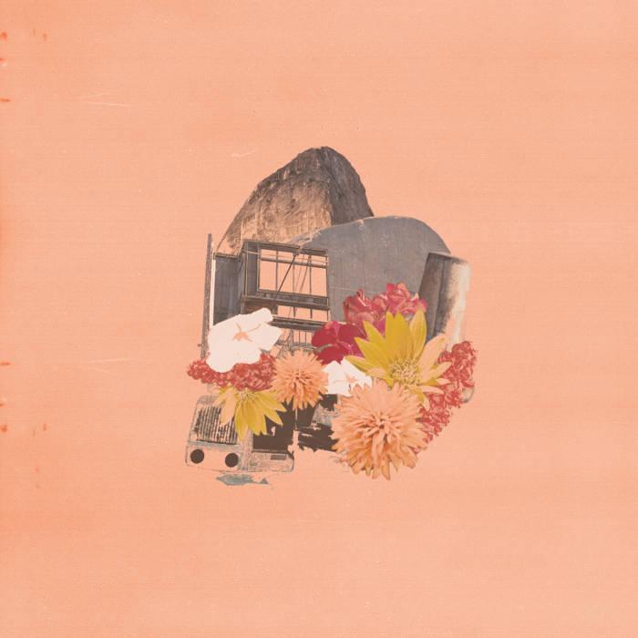 Wayside cover art
