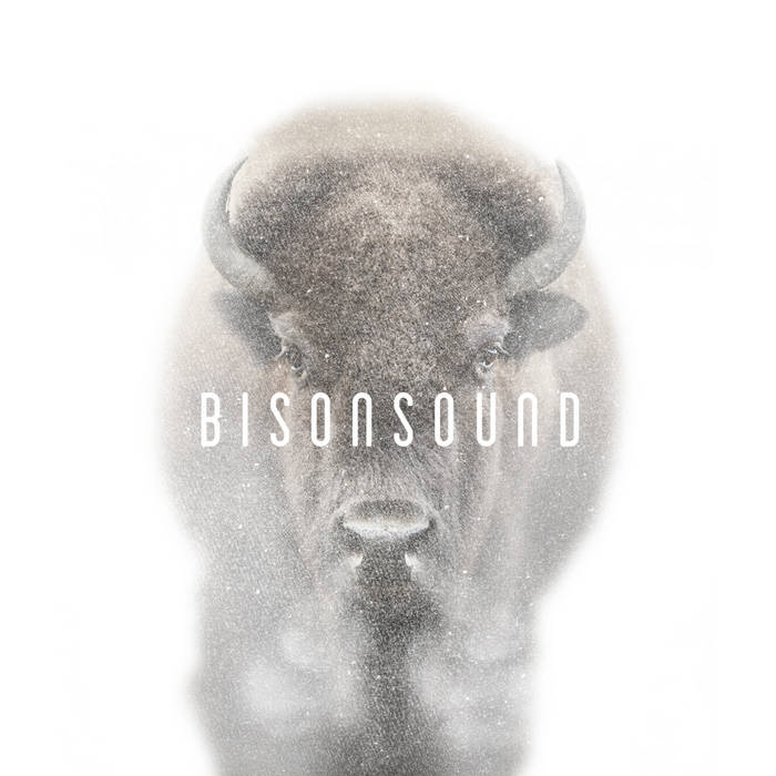 BisonSound cover art