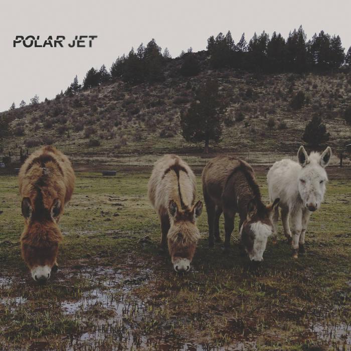 PolarJet cover art