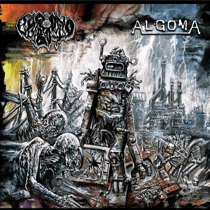 Chronobot/Algoma Split cover art