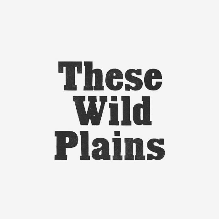 Waves / Plains cover art