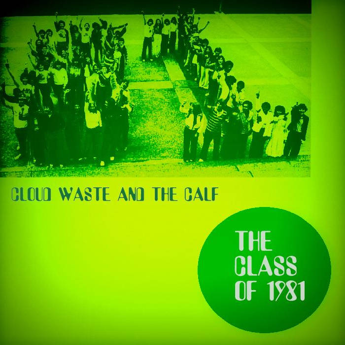 The Class of 1981 cover art