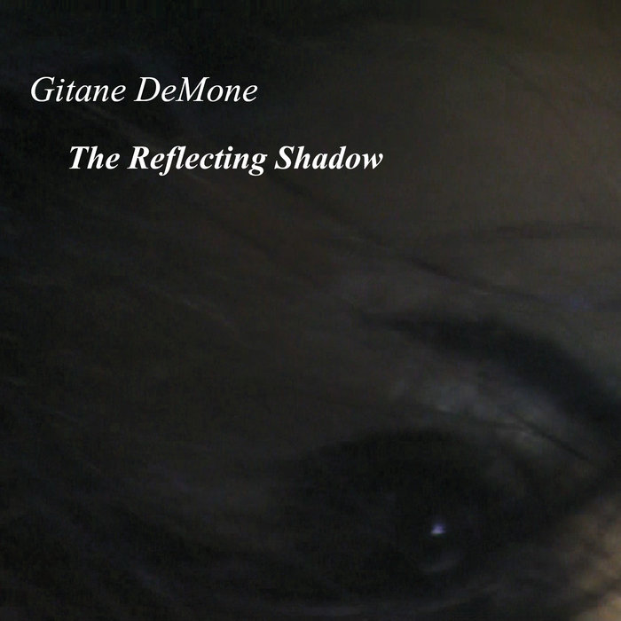 The Reflecting Shadow cover art