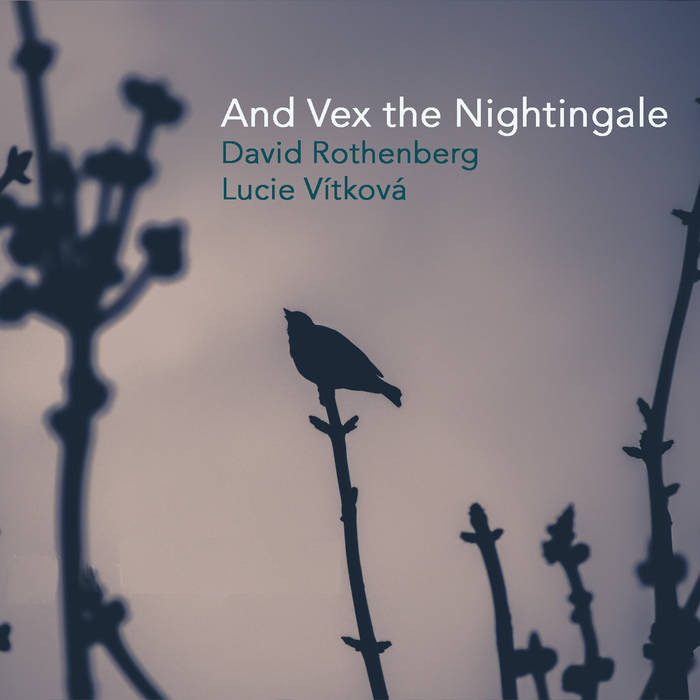 And Vex the Nightingale cover art