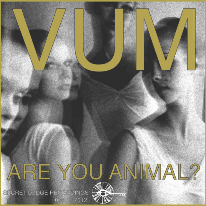Laura Palmer/Are You Animal? cover art