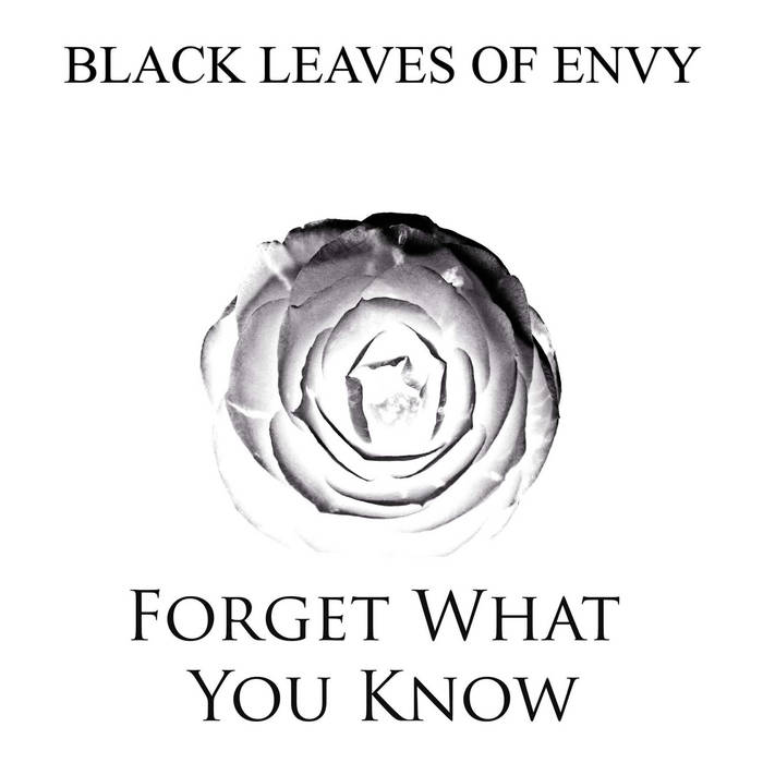Forget What You Know cover art