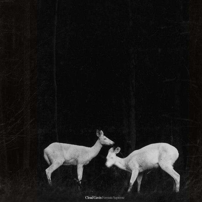 Fermata Supreme cover art