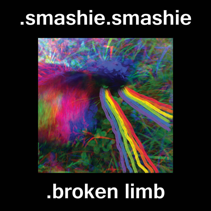 Broken Limb cover art