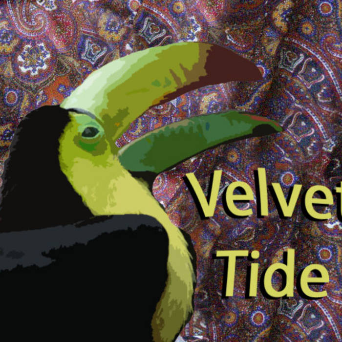 Velvet Tide cover art