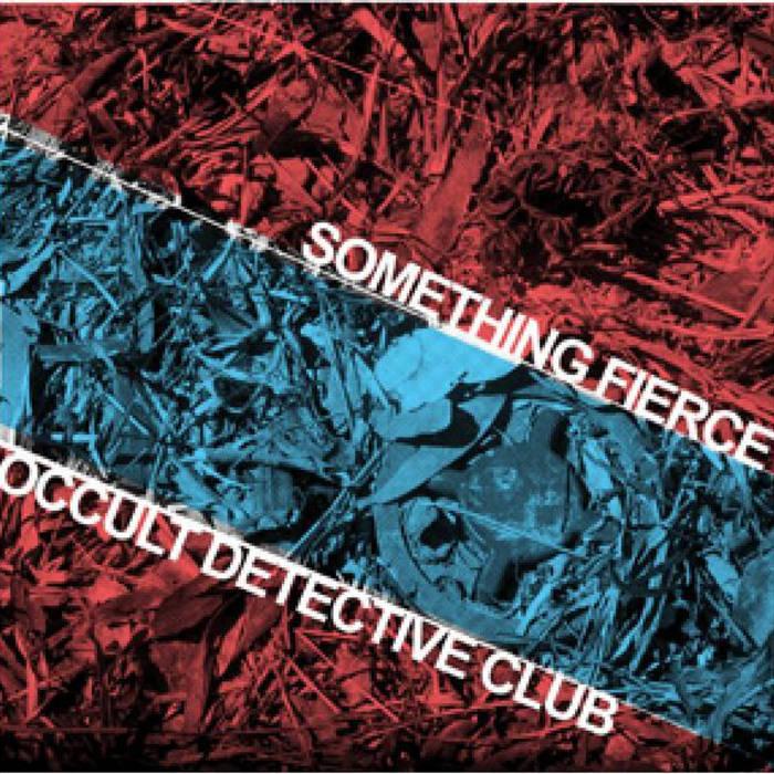 """Something Fierce Split 10"""" cover art"""