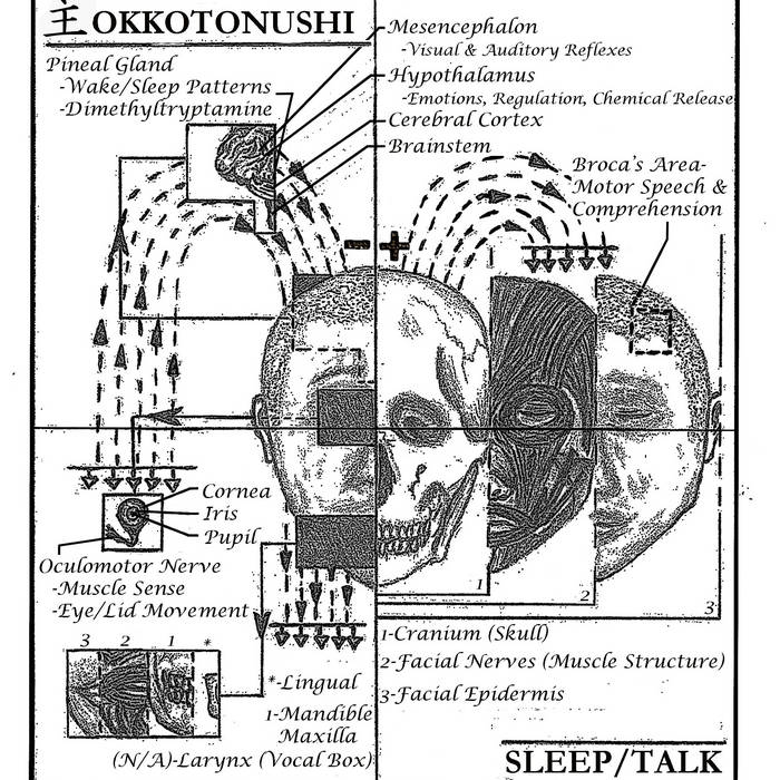 Sleep/Talk cover art