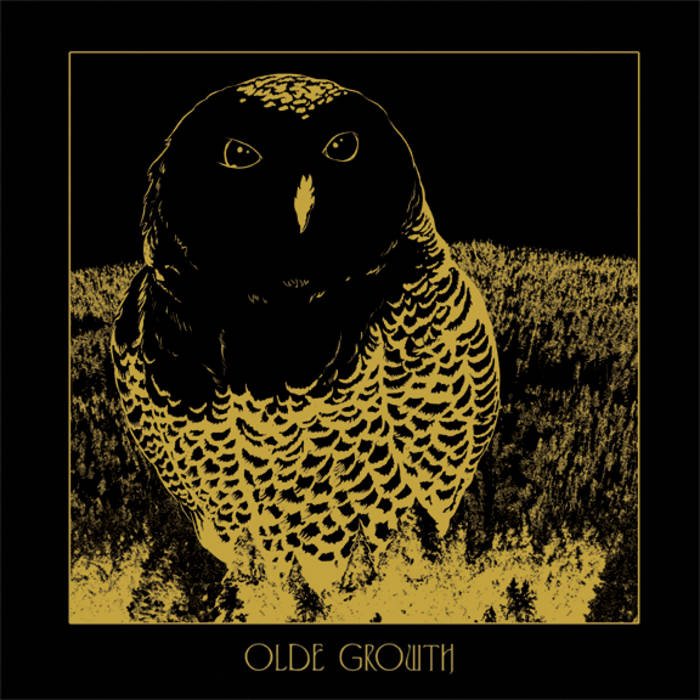 Owl EP cover art