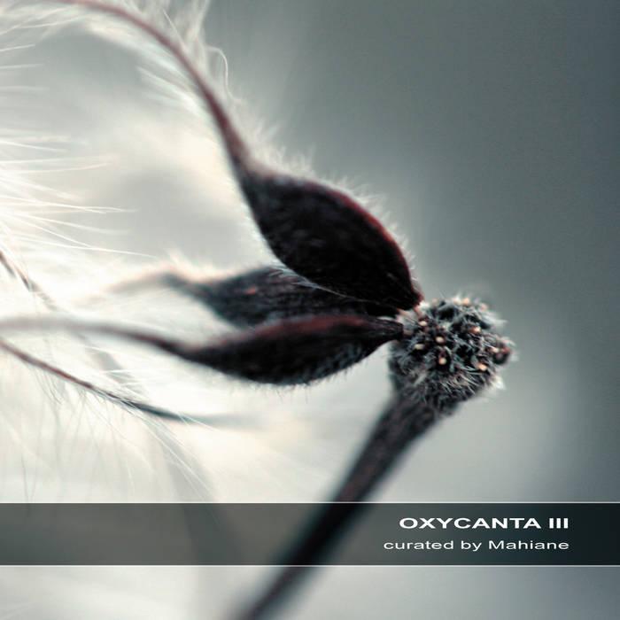 Oxycanta III cover art