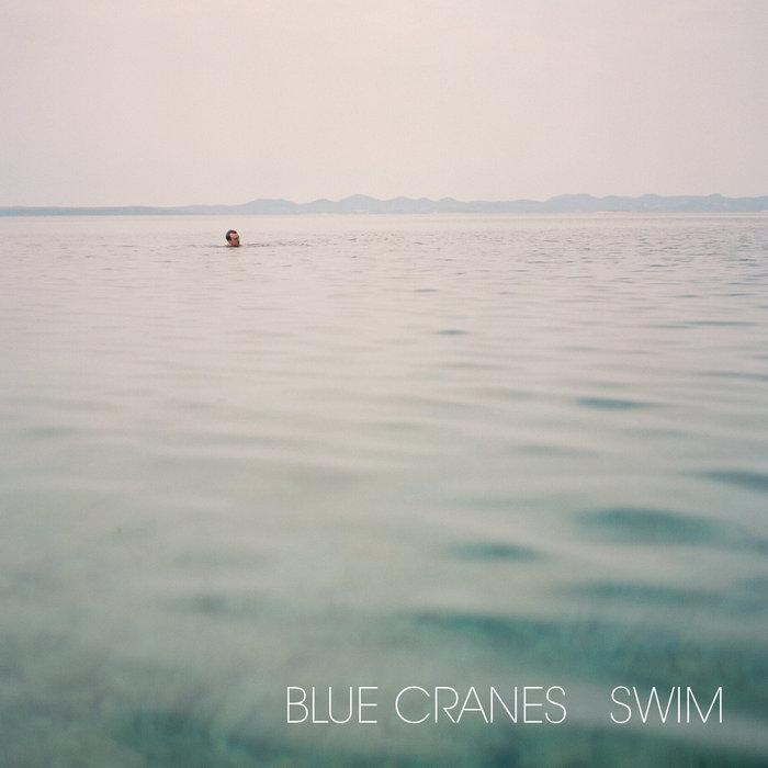 Swim cover art