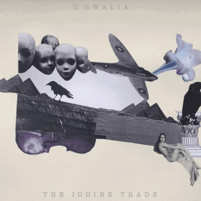 The Iodine Trade cover art
