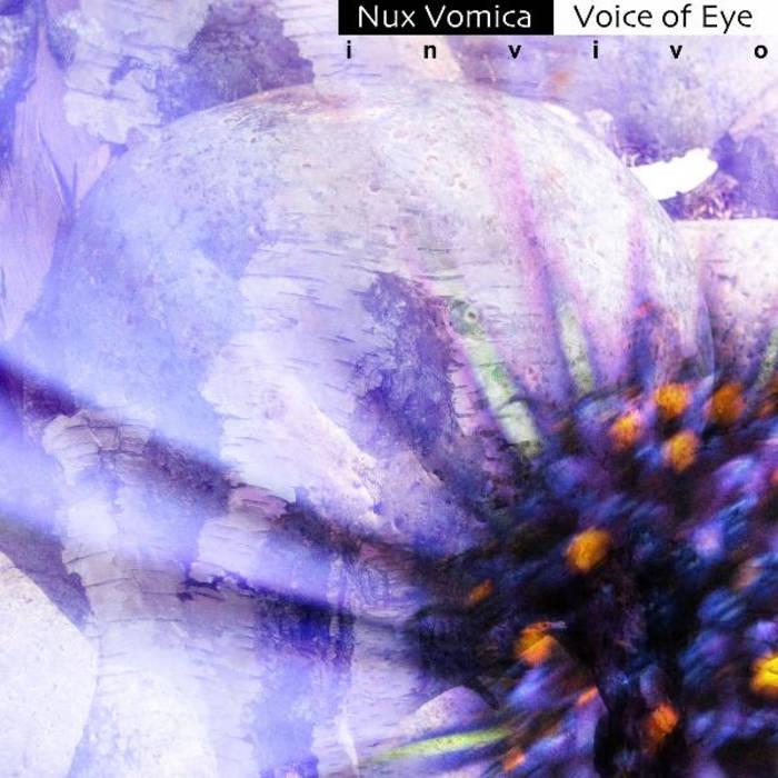 Invivo cover art