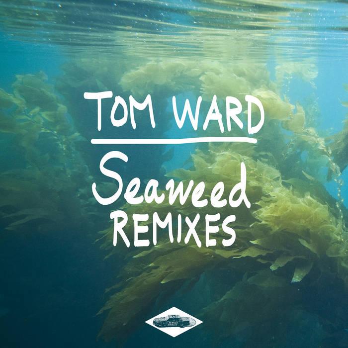 Seaweed Remixes EP cover art
