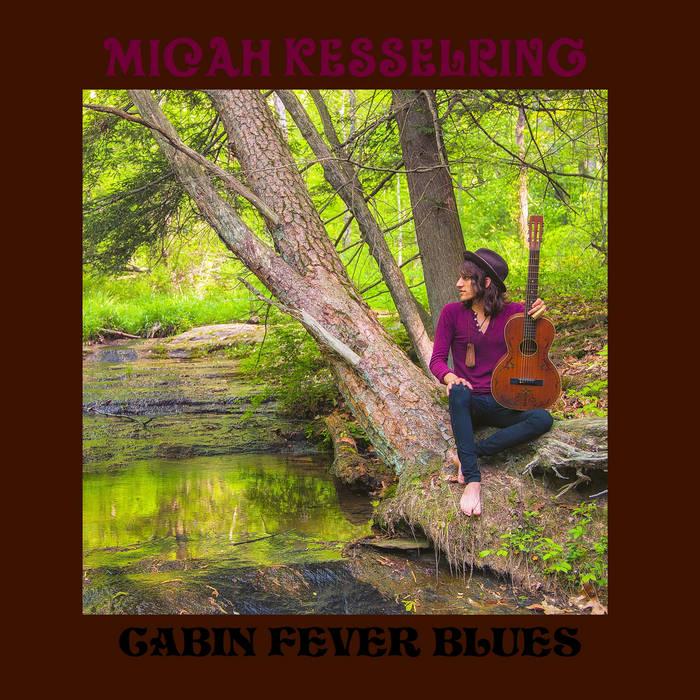 Cabin Fever Blues cover art