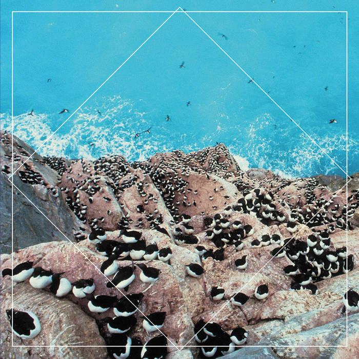 "WAAT048 Split 7"" w/Hookworms cover art"